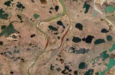 Nga: Thiệt hại môi trường do sự cố tràn dầu lên tới hơn 2 tỷ USD