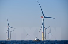 Lĩnh vực điện gió của các nước châu Á sẵn sàng cất cánh?