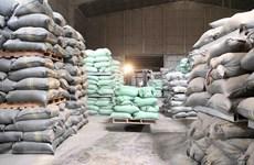Mua và nhập kho hơn 84% lượng gạo dự trữ quốc gia năm 2020