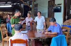 Gia Lai: Khởi tố chủ doanh nghiệp tư nhân Hùng Ny buôn gỗ lậu