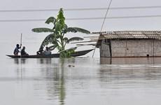 Gần 4 triệu người tại Ấn Độ và Nepal phải sơ tán khẩn cấp do lũ lụt