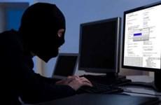 Serbia và FBI triệt phá đường dây lừa đảo trực tuyến quốc tế