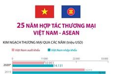 [Infographics] 25 năm hợp tác thương mại Việt Nam-ASEAN