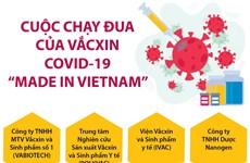 [Infographics] Việt Nam dự kiến có vắcxin COVID-19 vào tháng 10/2021