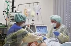 Đức: Hơn 50% số bệnh nhân COVID-19 thở máy không thể qua khỏi