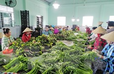 Kiên Giang ra mắt Sàn giao dịch mua bán sản phẩm của các hợp tác xã