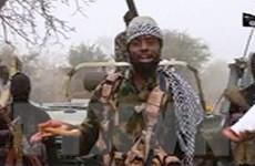 Cameroon: Tấn công bằng lựu đạn, hơn 10 người thiệt mạng