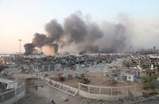 Lầu Năm Góc: Không có bằng chứng vụ nổ ở Beirut là do bị tấn công