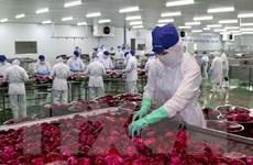 Lâm Đồng: Thành lập cụm công nghiệp Đinh Văn ở huyện Lâm Hà