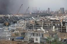 Vụ nổ ở Beirut: Liban sẽ tiến hành thẩm vấn một số Bộ trưởng