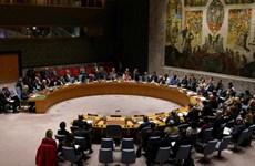 Hội đồng Bảo an bác nghị quyết gia hạn lệnh cấm vũ khí đối với Iran