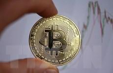 Đà tăng nóng của tiền điện tử bitcoin liệu có sớm hạ nhiệt?