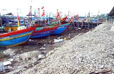 Nghệ An: Vỏ ốc đổ ngập cảng cá Lạch Vạn làm cản trở dòng chảy
