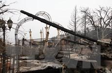 Mỹ: Bang California nỗ lực cứu hàng trăm người mắc kẹt do cháy rừng