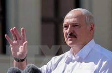 Tổng thống Belarus không loại trừ khả năng bầu cử sớm