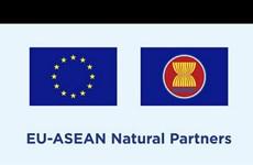 EU công bố quan hệ đối tác mới với 19 cơ sở nghiên cứu của ASEAN