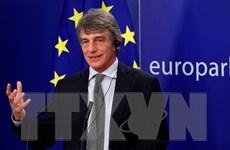 Dịch COVID-19: Nghị viện châu Âu dời cuộc họp từ Pháp về Bỉ