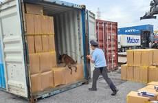 Phát hiện số lượng lớn thuốc lá 555 giả mạo tại Cảng Hải Phòng