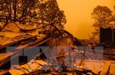 Mỹ ban bố tình trạng thảm họa tại bang Oregon do cháy rừng