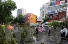Sẵn sàng nguồn lực hỗ trợ người dân bị ảnh hưởng của bão số 5