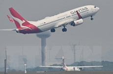 Tổng lương của CEO Qantas Airways bị giảm tới 83% do dịch COVID-19