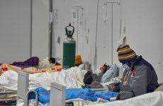 Dịch COVID-19 ngày 19/9: Peru ảnh hưởng nặng nhất xét về tỷ lệ dân số