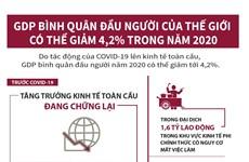 [Infographics] GDP bình quân đầu người của thế giới có thể giảm 4,2%