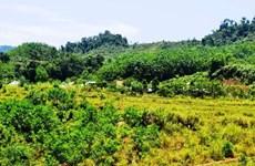 Thủ tướng chấp thuận chuyển mục đích sử dụng đất tại tỉnh Phú Yên