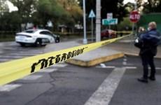 Xả súng tại một quán ăn ở Mexico khiến 12 người thương vong
