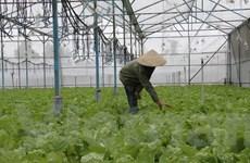 Đồng Nai: Lấy giá trị làm chiến lược phát triển nông nghiệp