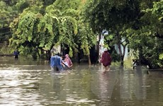 Quảng Nam: Mưa lũ kéo dài gây thiệt hại nhiều tài sản của người dân