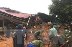 Hiện tượng sạt lở đất ở Việt Nam - căn nguyên tự nhiên và nhân tạo