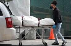 Chuyên gia Mỹ lo ngại tốc độ lây nhiễm của đại dịch COVID-19