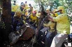 Lở đất ở El Salvador, 7 người chết và hàng chục người bị chôn vùi