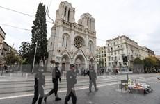 Pháp: Phát hiện mối liên hệ giữa hai vụ tấn công trong tháng 10