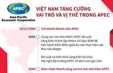 [Infographics] Việt Nam tăng cường vai trò và vị thế trong APEC