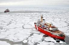 IMO thông qua lệnh cấm sử dụng dầu nhiên liệu nặng ở Bắc cực