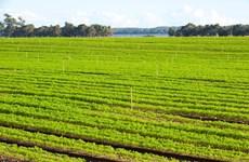 Australia đã hoàn thành mục tiêu giảm khí thải của năm 2020
