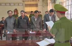 Đắk Lắk: Bắt giam thêm 4 lãnh đạo, cán bộ Công ty Lâm nghiệp Ea Kar