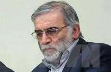 Iran truy tặng huân chương cho nhà khoa học hạt nhân Fakhrizadeh