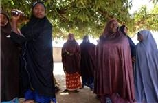 Nhà chức trách Nigeria nỗ lực giải cứu các học sinh bị bắt cóc