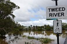 Những trận bão lớn hoành hành tại khu vực Đông Bắc Australia