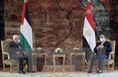 Tổng thống Ai Cập El-Sisi khẳng định tiếp tục ủng hộ Palestine