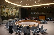 Việt Nam khẳng định ủng hộ chống phổ biến và giải trừ vũ khí hạt nhân