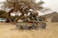 Quân đội Niger tiêu diệt 11 phần tử khủng bố trước thềm bầu cử