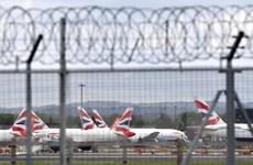 Trung Quốc đình chỉ vô thời hạn các chuyến bay thẳng đến và đi từ Anh