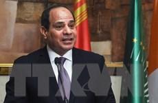 Ai Cập và Kuwait trao đổi quan điểm về vấn đề giữa các nước Arab