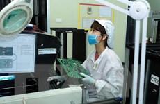 TP.HCM: Ngành điện tử và công nghệ thông tin cần nguồn nhân lực lớn