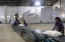 Thách thức và cơ hội cho ngành mía đường trong niên vụ mới