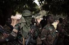 CH Trung Phi: Quân đội đẩy lùi hai vụ tấn công của phiến quân
